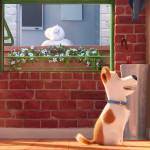 Pets_-_Vita_da_Animali_teaser_trailer_screenshot